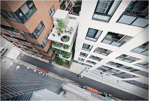 garden-house-tokyo